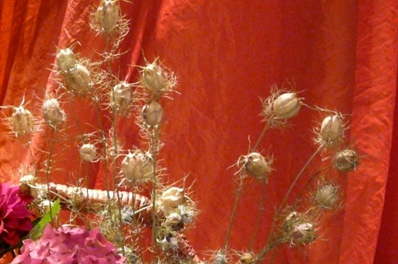 fleurs_sechees_fil2008