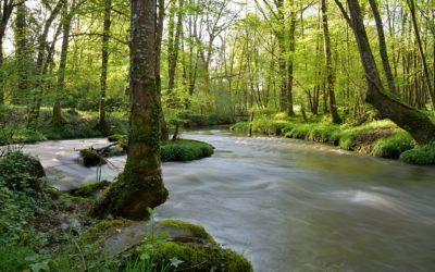 contes de Nature à Merlevenez